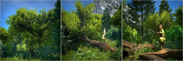 07 TreeComic